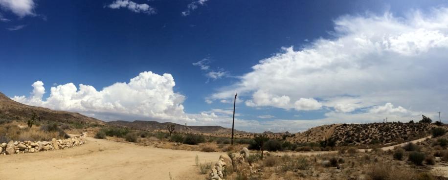 landscape view east